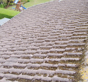 Roof Cleaning Leicestershire image